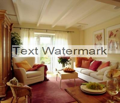 save text watermark